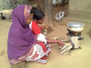 Cooking on the Greenway stove